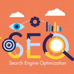Do you need professional SEO services?