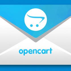 Website development opencart
