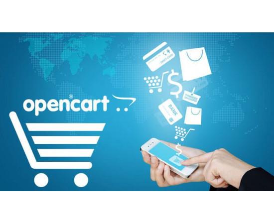 Разработка интернет магазина OpenCart  | магазин OpenCart Рига Латвия | Онлайн шоп Opencart | купить магазин Opencart