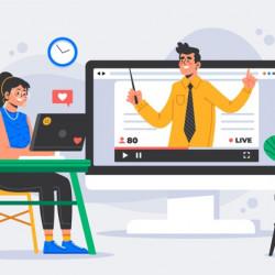 Web design training online (Zoom, Skype)